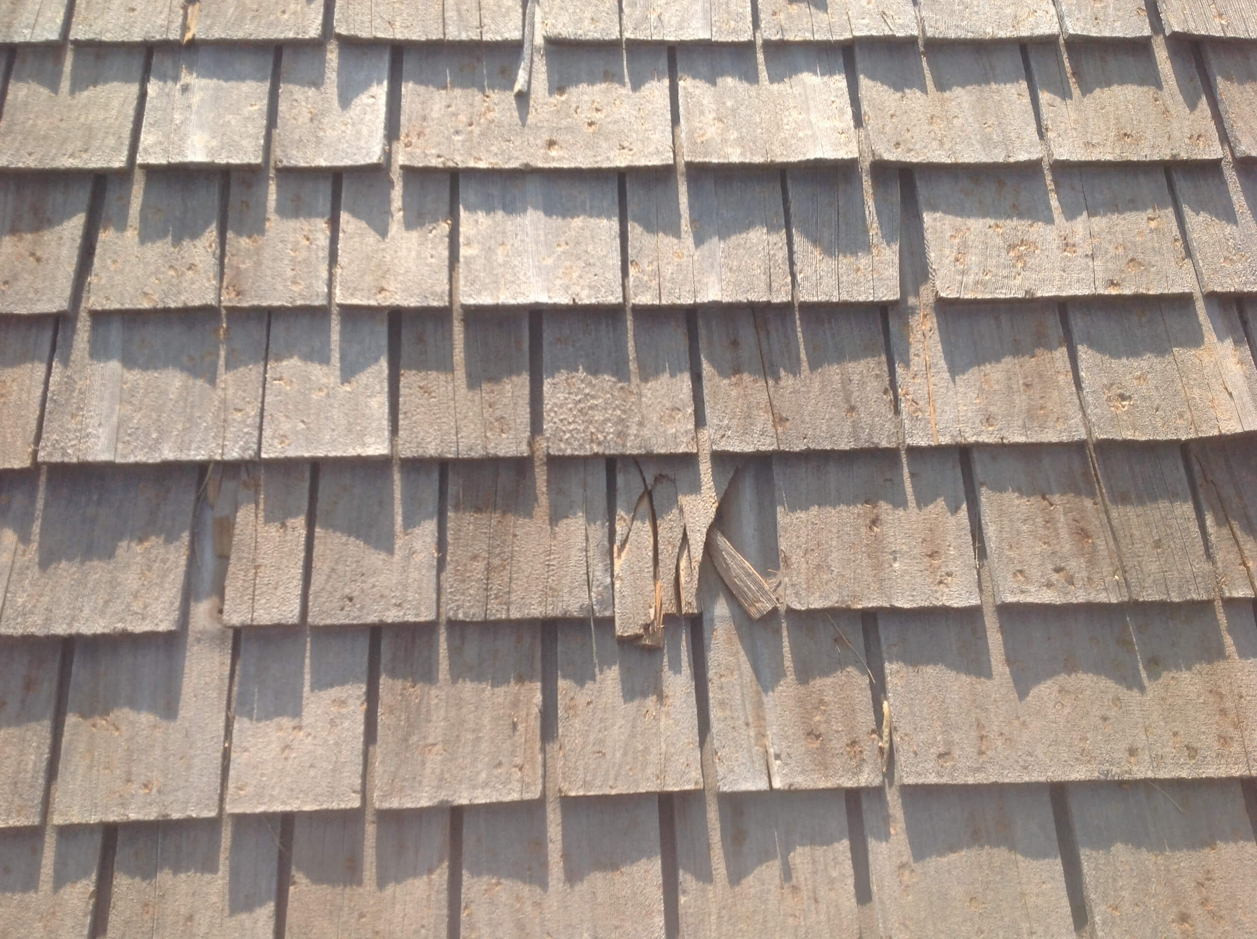 Cedar Shake Roof Damage