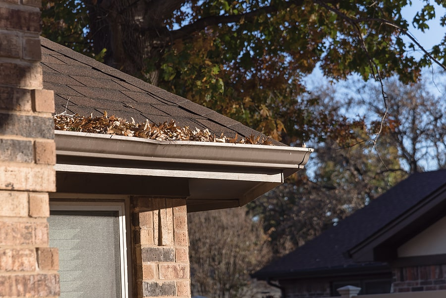 Getting Your Roof Ready For The Fall