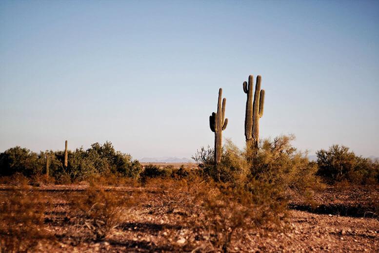 Can Your Shingles Handle Texas Heat