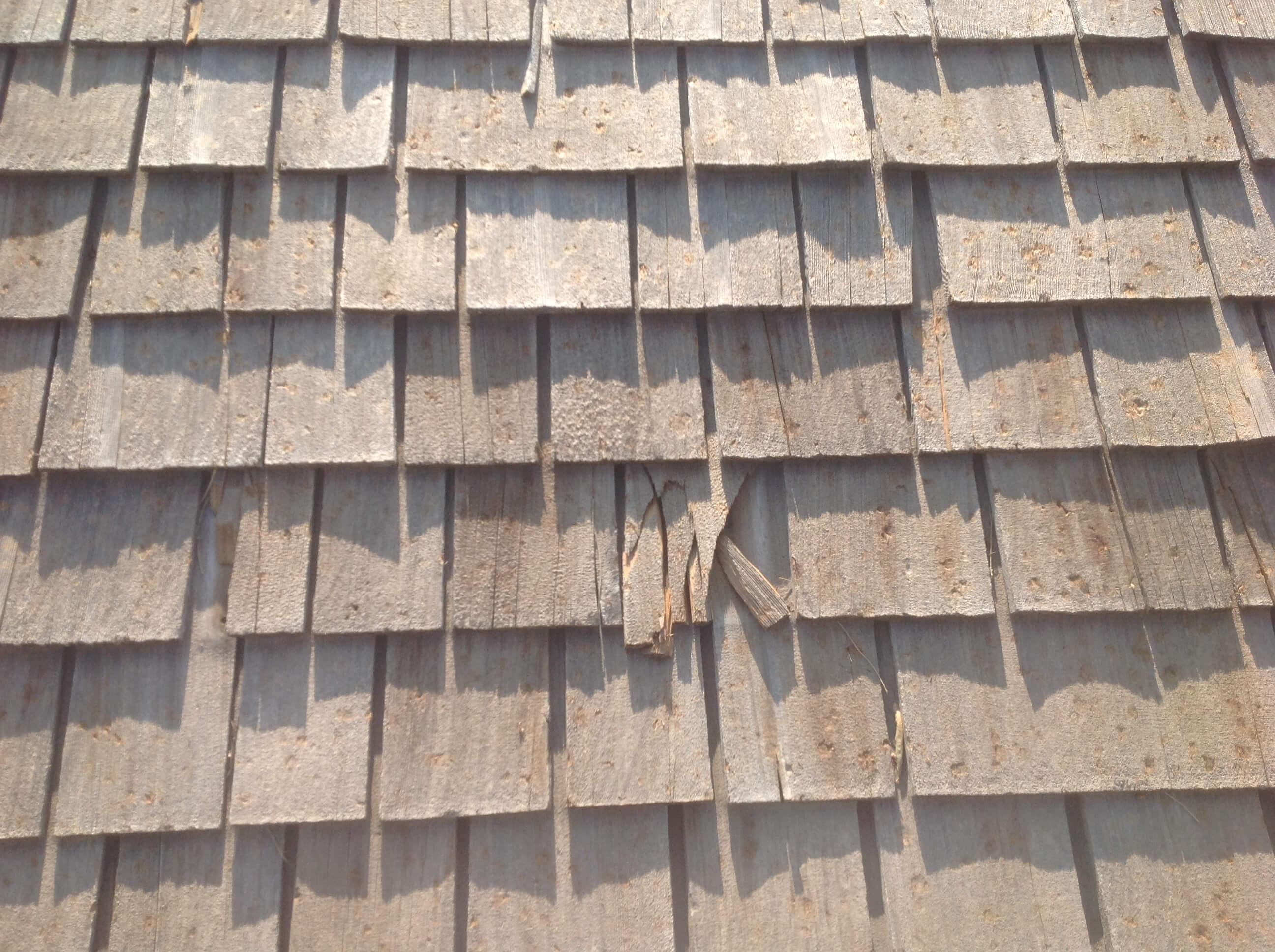 Cedar Shake Roof Damage
