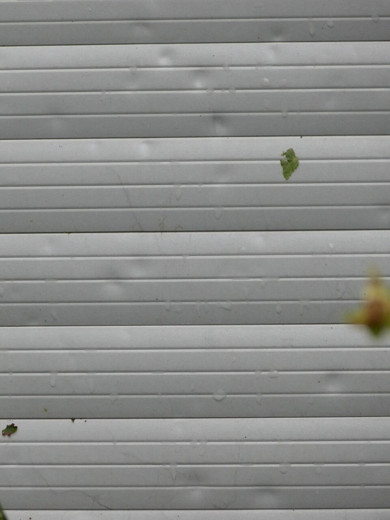 Hail Damage To Roof Dfw